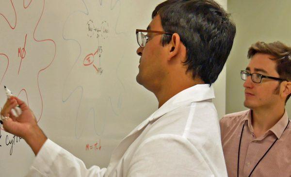 NIH Funds Study on Viral microRNAs