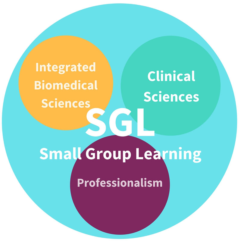 SGL: Small Group Learning; Integrated Biomedical Sciences; clinical sciences; professionalism