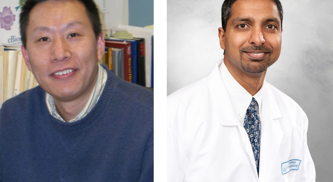 Periodontics Professors Studying Oral Wound Healing