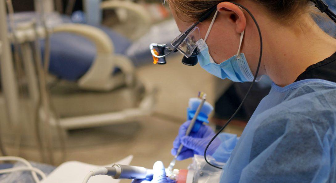 Roadmap to Dental School Application