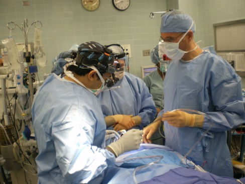 dentists in the OR