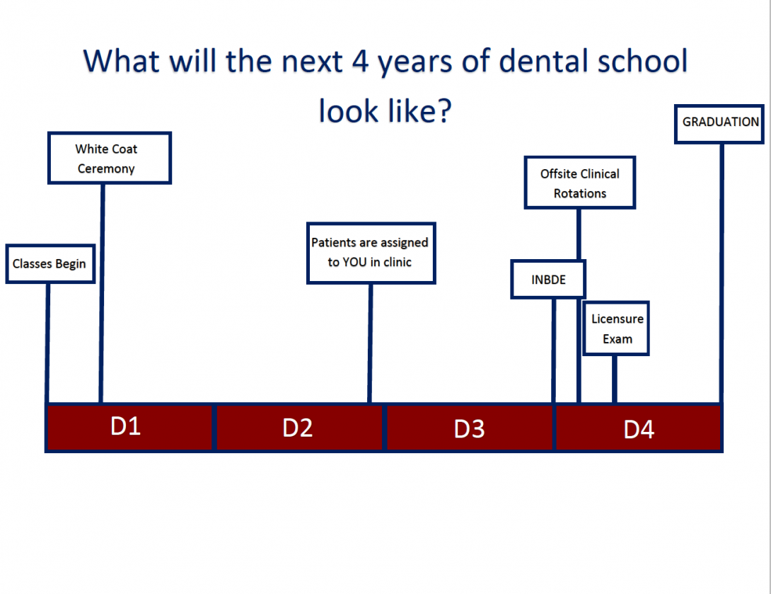 What will the next 4 years of dental school look like?