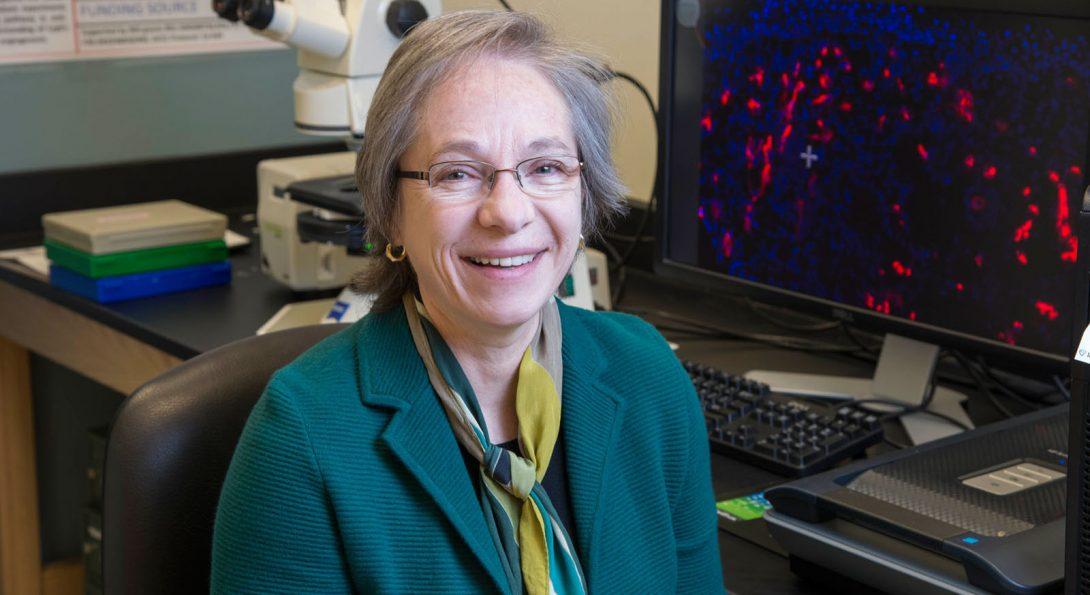 Dr. Luisa DiPietro